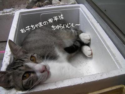 微睡み07