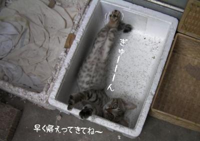 ぷち家出04