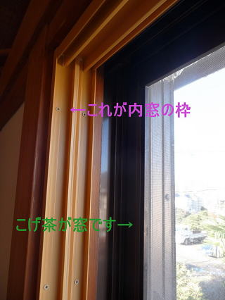 P1070330-11.jpg