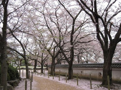 2012春 龍野公園