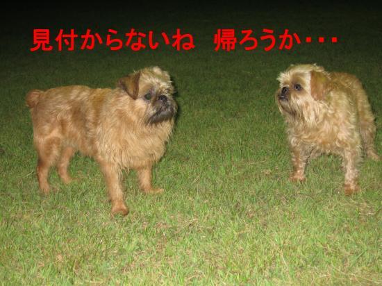 004-5_convert_20111002051001.jpg