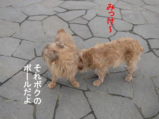 縺輔s-3_convert_20111118032249