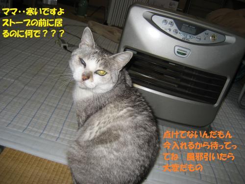 IMG_1565_convert_20131216074543.jpg