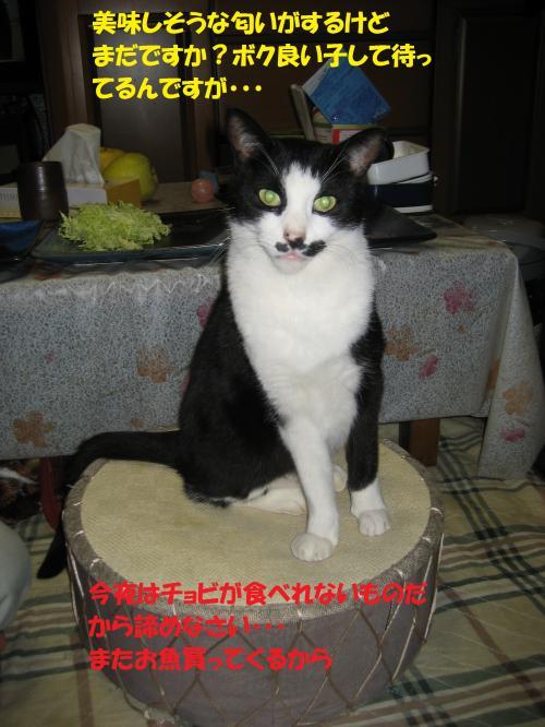 IMG_1567_convert_20131216074631.jpg