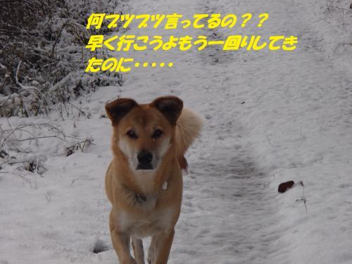 PC206296_convert_20131222082805.jpg