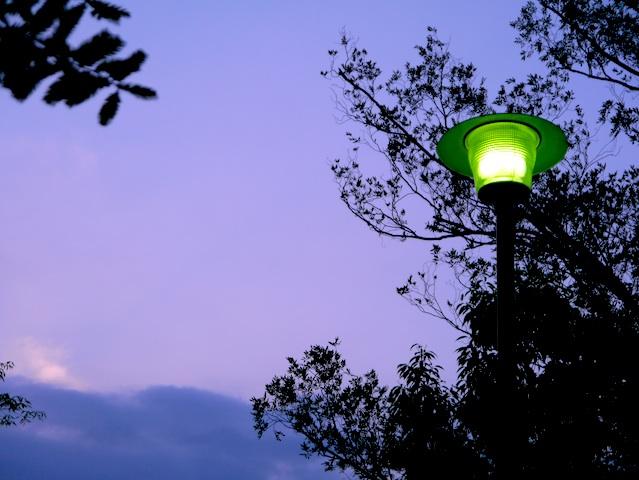 夕闇迫るライト1