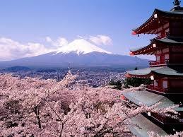 日本0220