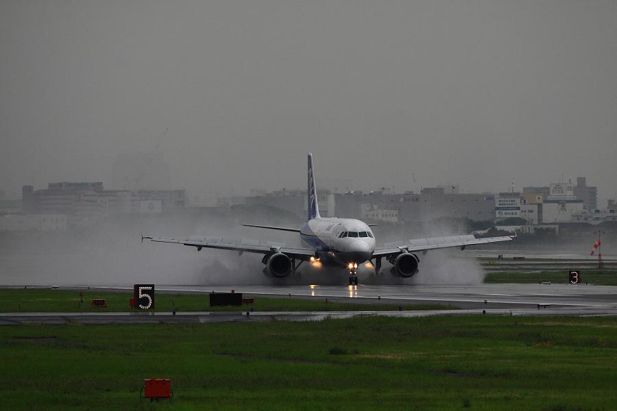 ANA A320-211 / ANA554 (レジ不明)