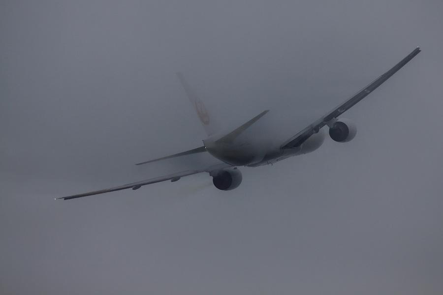 JAL B777-289 / JAL110 (JA8979)