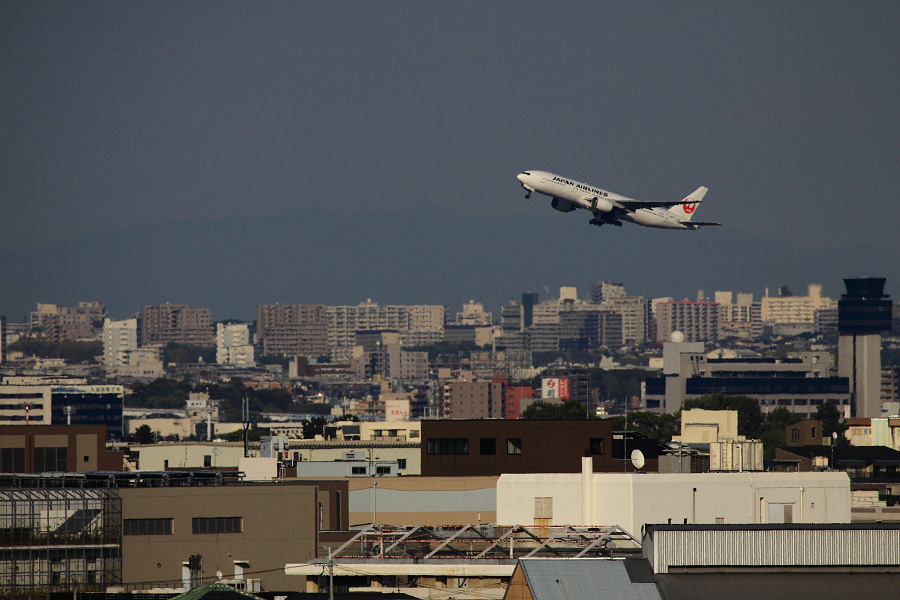 JAL B777-289 JAL126@伊丹市内某所(by EOS 50D with EF100-400mm F4.5-5.6L IS USM)