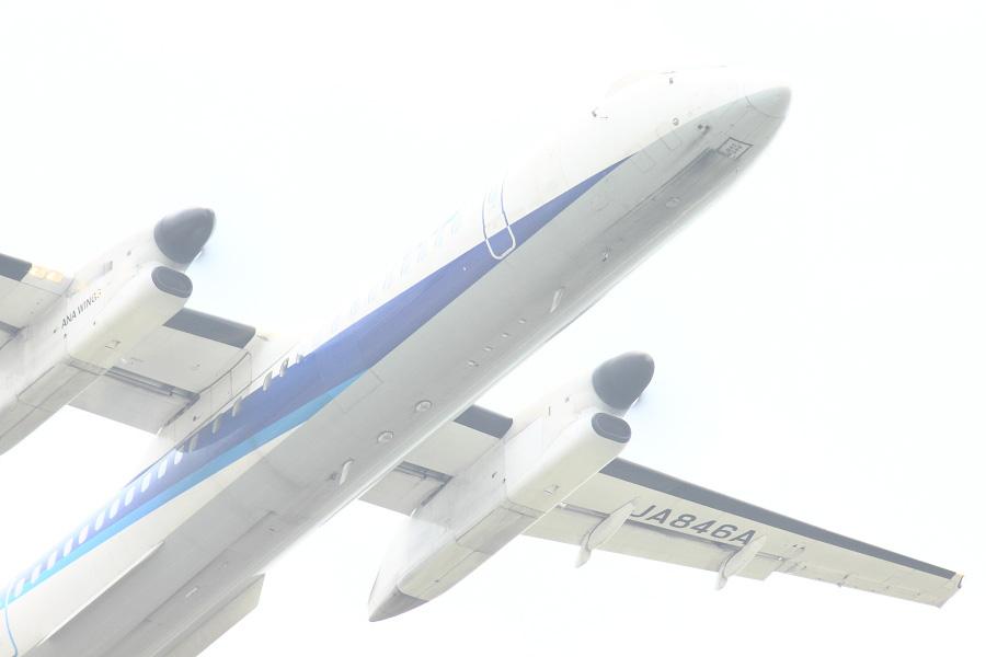 ANA WINGS DHC-8-402Q / ANA1677