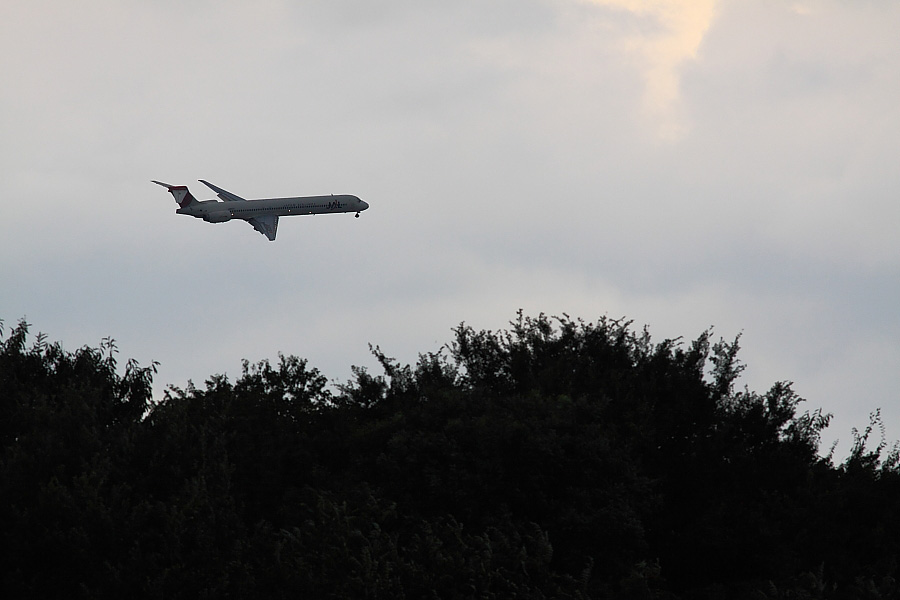 JAL MD-90 JAL2332@昆陽池公園(by EOS50D with SIGMA APO 300mm F2.8 EX DG/HSM)