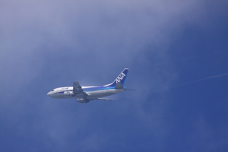AKX B737-54K ANA513@瑞ヶ池公園(by EOS50D with SIGMA APO 300mm F2.8 EX DG/HSM + APO TC1.4x EX DG)