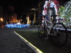 2011.12.22イルミ3