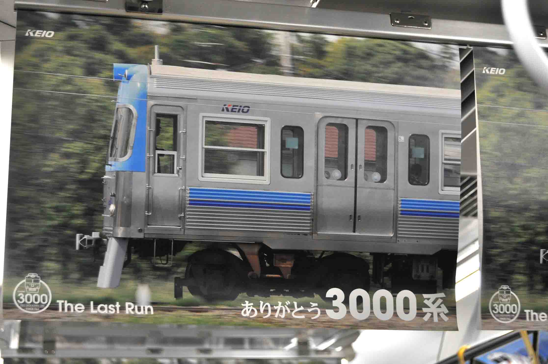 DSC_2038A.jpg