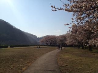 ooshima.jpg
