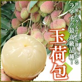 lychee-gyokkaimage01.jpg