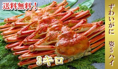 zuwai5hai_big.jpg