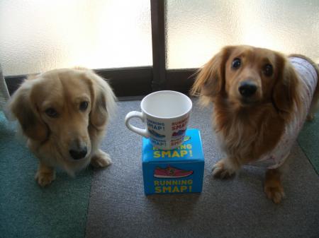 ちぃのあ&マグカップ