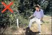 imageCAEDJESS_20110915144332.jpg