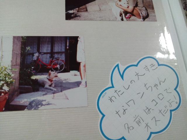 fc2blog_20120504193035dbb.jpg