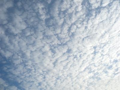20110922-1.jpg