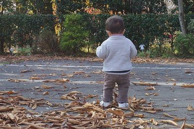 落ち葉のカーディガン