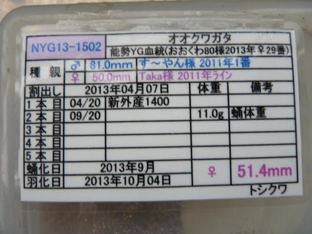 P1030963.jpg