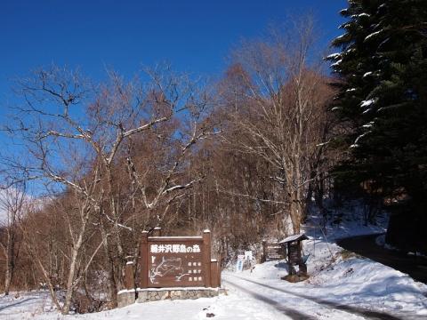 野鳥の森入口131222