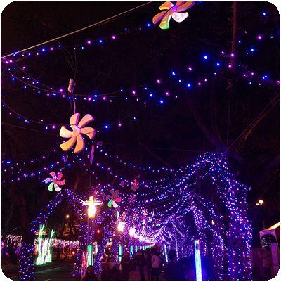 2014台北ランタンフェスティバル紫アーチ