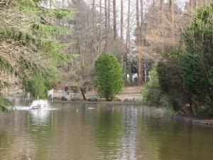 公園風景縮小