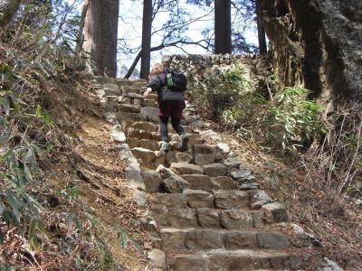 階段登り2縮小