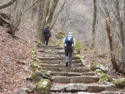 階段登り1縮小