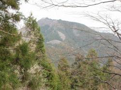 山イメージ2縮小