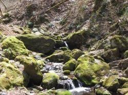 川イメージ2縮小
