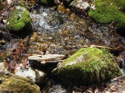 川イメージ1縮小
