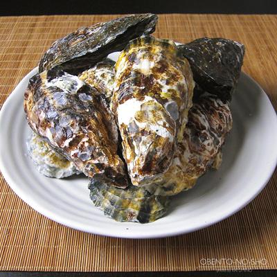 赤穂の牡蛎