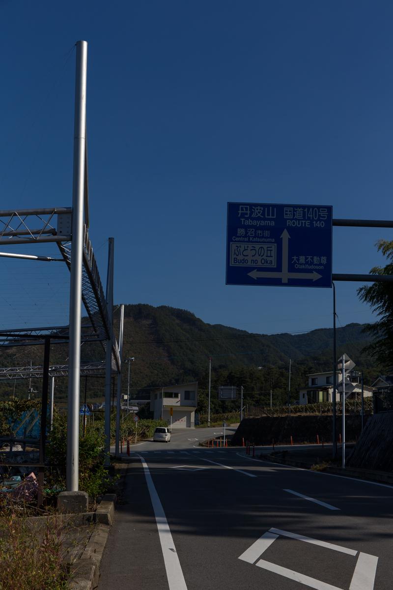 フルーツマラソンコース試走(21)