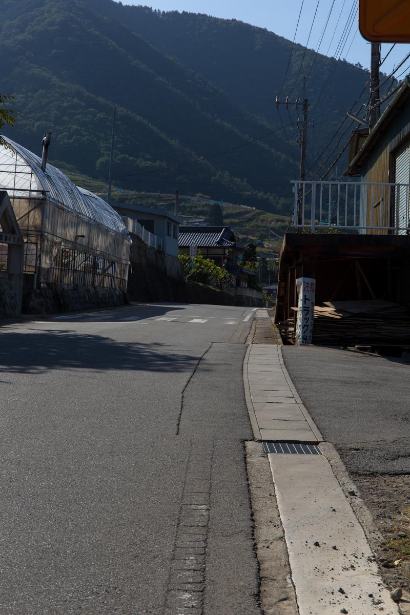 フルーツマラソンコース試走(23)