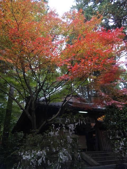 猿丸神社 5