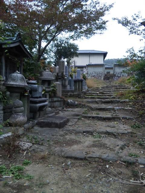 俊成、明兆墓地 (1)