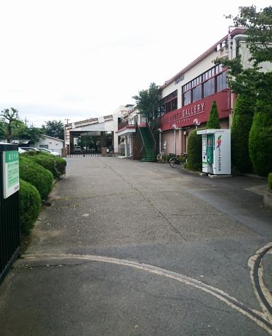 薬師東京写真展1