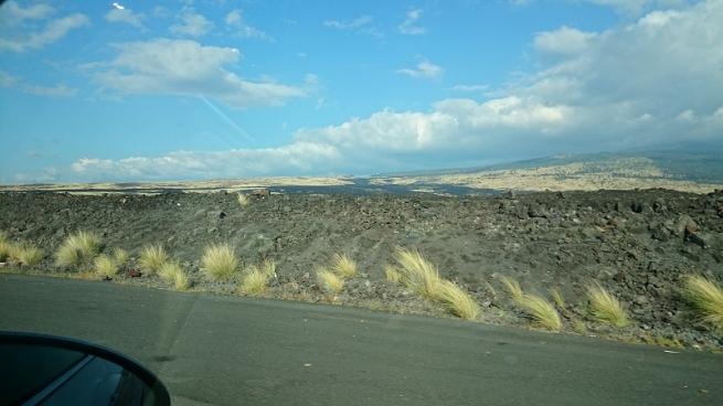 ハワイ島風景2