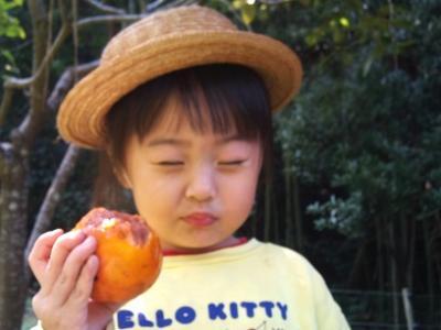 20111009稲こぎ (7)