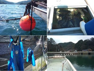 魚屋 (2)