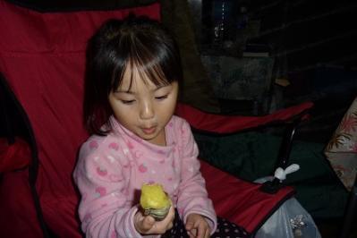 20111112歌瀬キャンプ② (10)