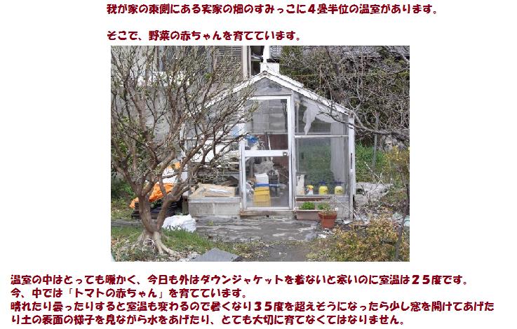 2012年温室全体。