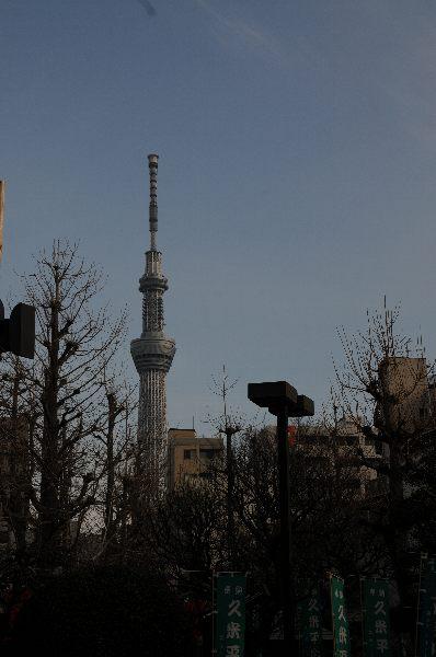 20130121-07.jpg
