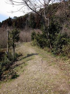 ハイキングコース 愛宕神社参道・いにしえコース
