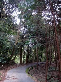 ハイキングコース 赤谷川沿川・城跡コース